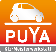 Auto Service Puya